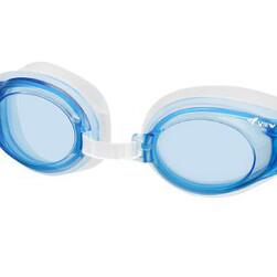 View Anti-fog Goggle
